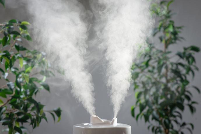 気化式の加湿器とは