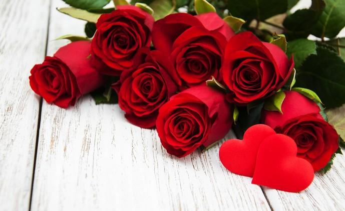 母の日に贈りたいバラの本数別別の花言葉