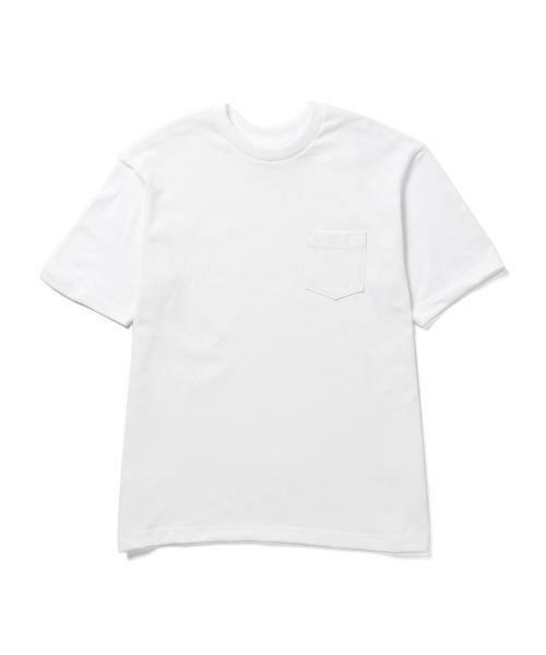 アナトミカのメンズ白Tシャツ