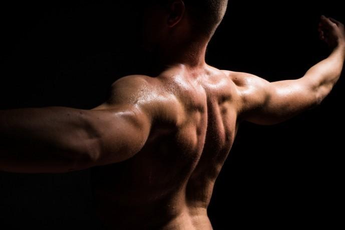 ワンハンドローイングで鍛えられる筋肉部位