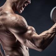 上腕筋の効果的な鍛え方。力強い腕周りを作る最強トレーニングメニュー | Smartlog