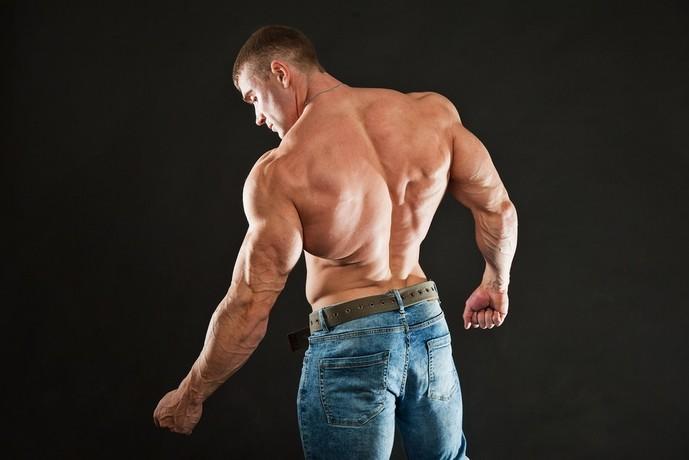 上腕にある筋肉、烏口腕筋とは?