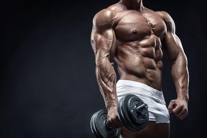 尺側手根伸筋を鍛えられるリバースリストカール