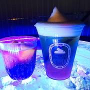 お酒を飲みながら水族館デート!? #アクアパーク品川 | Divorcecertificate