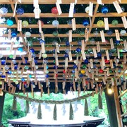 川越氷川神社 #縁むすび風鈴 が夏らしさ全開【9月10日まで】 | Smartlog