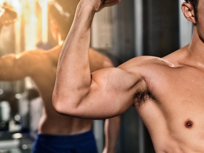 二の腕にある筋肉とは