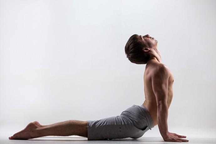 背中にある筋肉とは