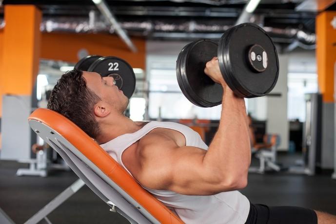 腕の主な筋肉の種類とは
