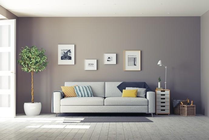 居心地の良い家に観葉植物を置く