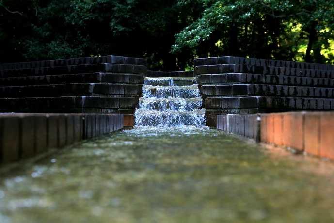町田の芹ヶ谷公園