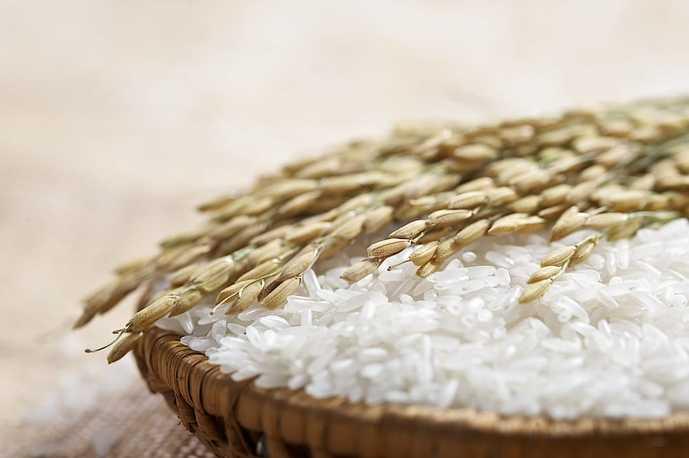 おしゃれな米びつのおすすめ商品