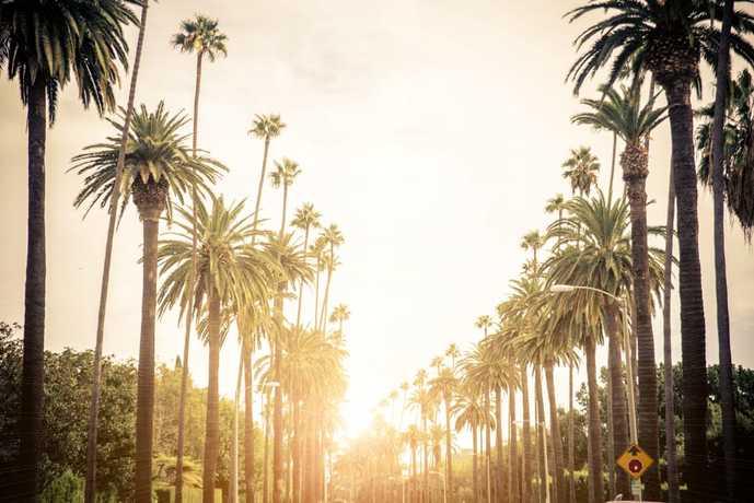 ロサンゼルスの夕焼け