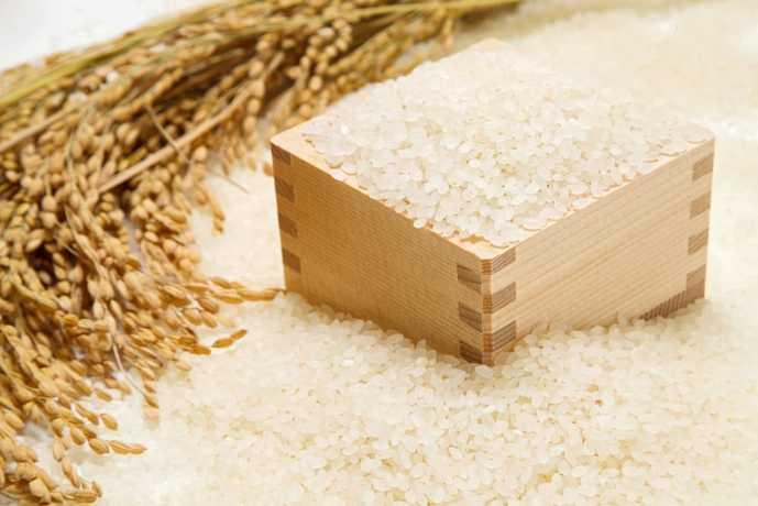 使い勝手の良い米びつの選び方とは