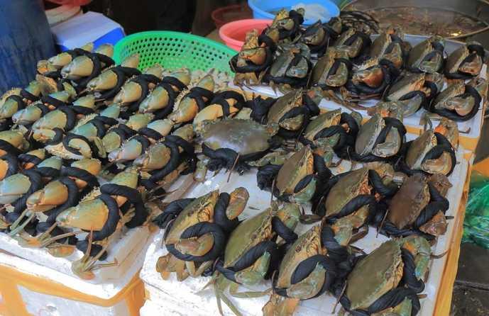 ベトナム・ハノイのおすすめ観光名所「ホム市場」