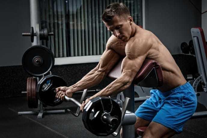 上腕二頭筋の効果的に鍛えられるバーベルトレーニング.jpg