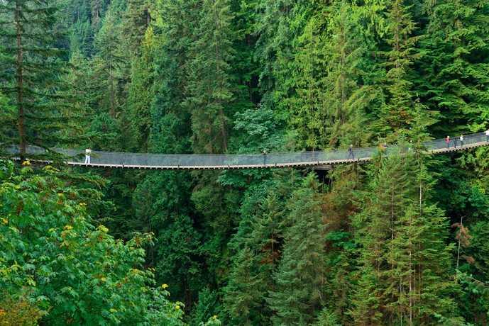 バンクーバーのおすすめ観光スポット「カピラノ吊り橋」