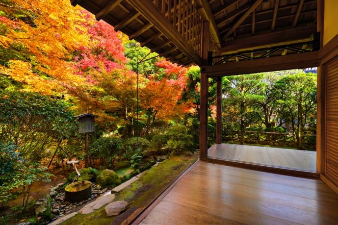 京都にある龍安寺の紅葉