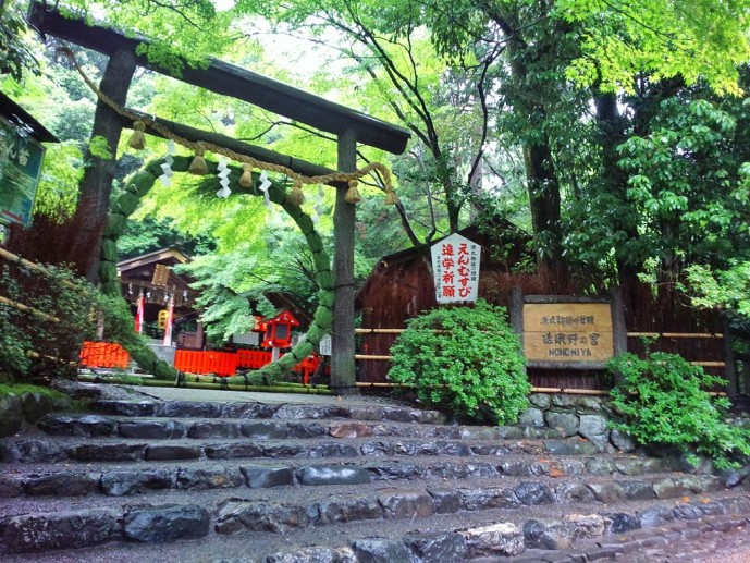 京都の野宮神社で紅葉デート