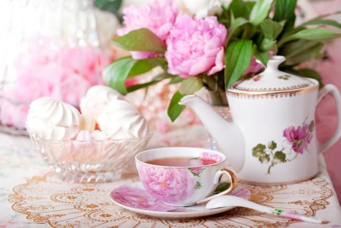 紅茶 ギフト