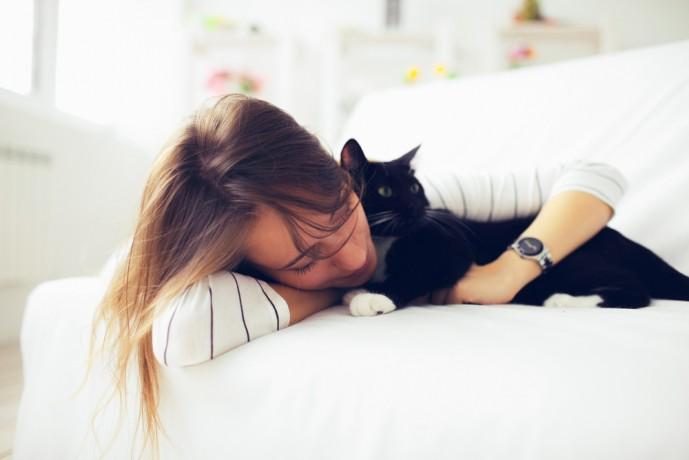 野良猫系女子 扱い方