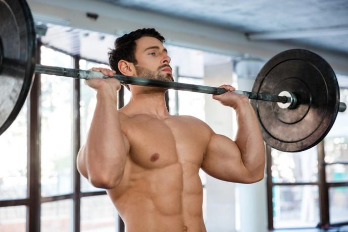 Shutterstock 331921715 689x460