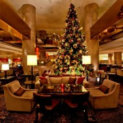 彼女が絶対喜ぶクリスマスディナー2017【東京・横浜の人気レストラン厳選】 | Smartlog
