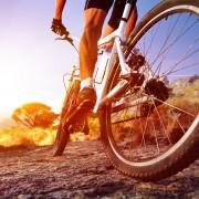 ロードバイクの人気メーカー
