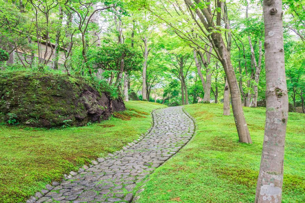 関東デートスポット箱根 彫刻の森美術館