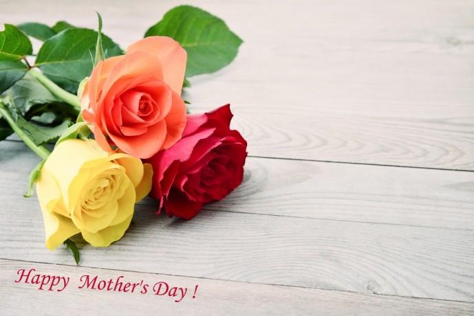 母の日のプレゼントにバラの贈り物