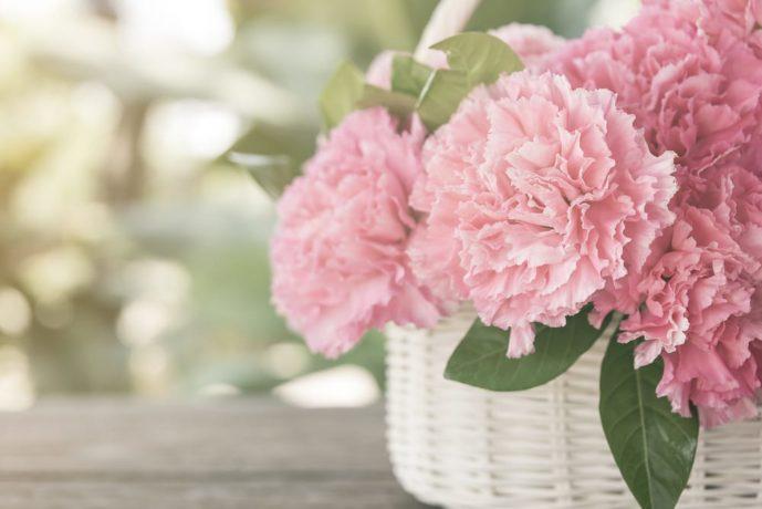 母の日のプレゼントはカーネーションの花束